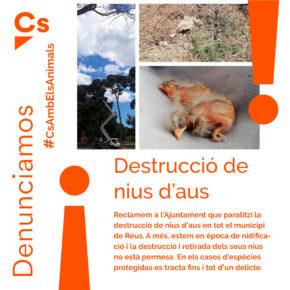 Ciutadans Reus denuncia la destrucció de nius d'aus protegides al parc de Mas Iglesias
